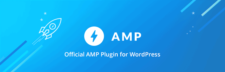 Wordpress SEO Plugin AMP